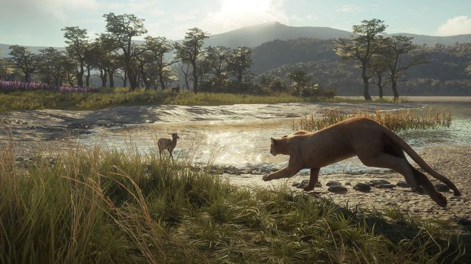 theHunter: Call of the Wild - Parque Fernando Torrent Download