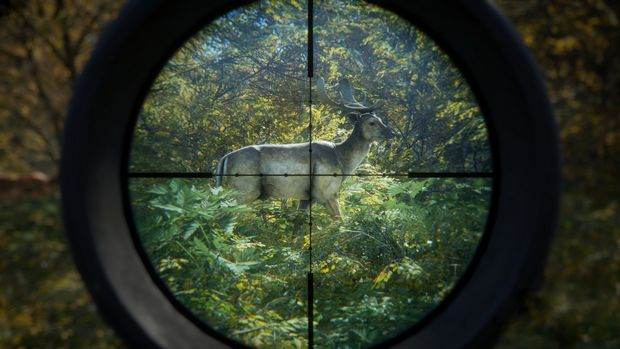 theHunter Call of the Wild Torrent Download