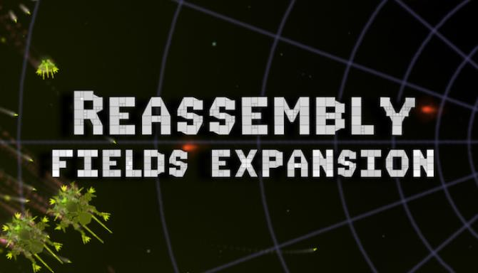 Reassembly Fields STANDALONE RIP-Unleashed